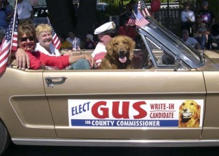 Gus, the golden retriever that received 28 write-in votes for San Juan County Commission in 2004, is setting his sights higher this election season. Gus, who is owned by David Rand of The Sign Company, announced in an e-mail today that he is running for president of the United States.