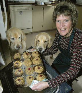 Canine Life: Home-Baked & Organic