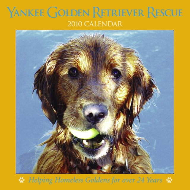 Happy New Year Golden Retriever Rescue Style Land Of Puregold